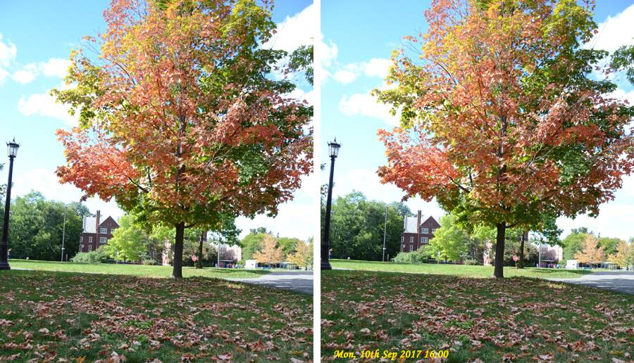 Timestamp on Photos Example